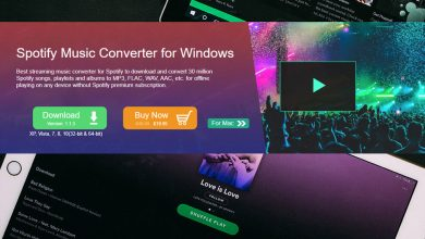 DRmare Spotify Music Converter Review