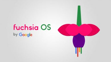 Photo of Project Fuchsia: The Android Successor is in Works Quietly at Google