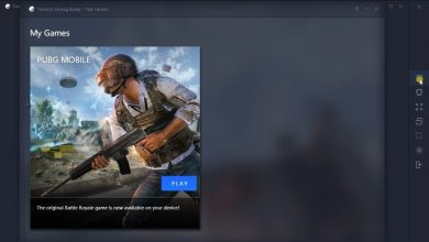 Photo of Download Official PUBG Mobile Emulator for Windows 10 PC