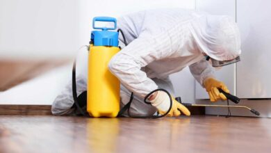 Photo of Why Pest Control Service is Essential for Your Home?