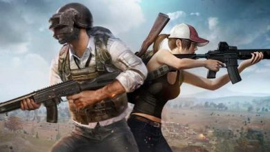 Photo of [Solved] Unable to Load PUBG and Garena Free Fire – Internet Error