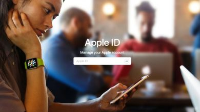 Reset Apple ID and iCloud Password