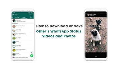 Save WhatsApp Status Videos and Photos