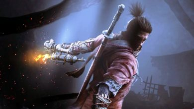 Sekiro Shadows Die Twice Troubleshooting Guide