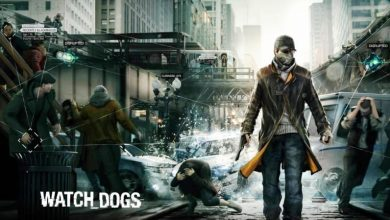 Watch Dogs Troubleshooting Guide