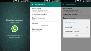 WhatsApp with Google Drive Backup