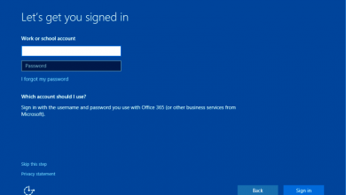 Windows Domain Setup